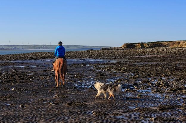 Horse Riding, Querrin